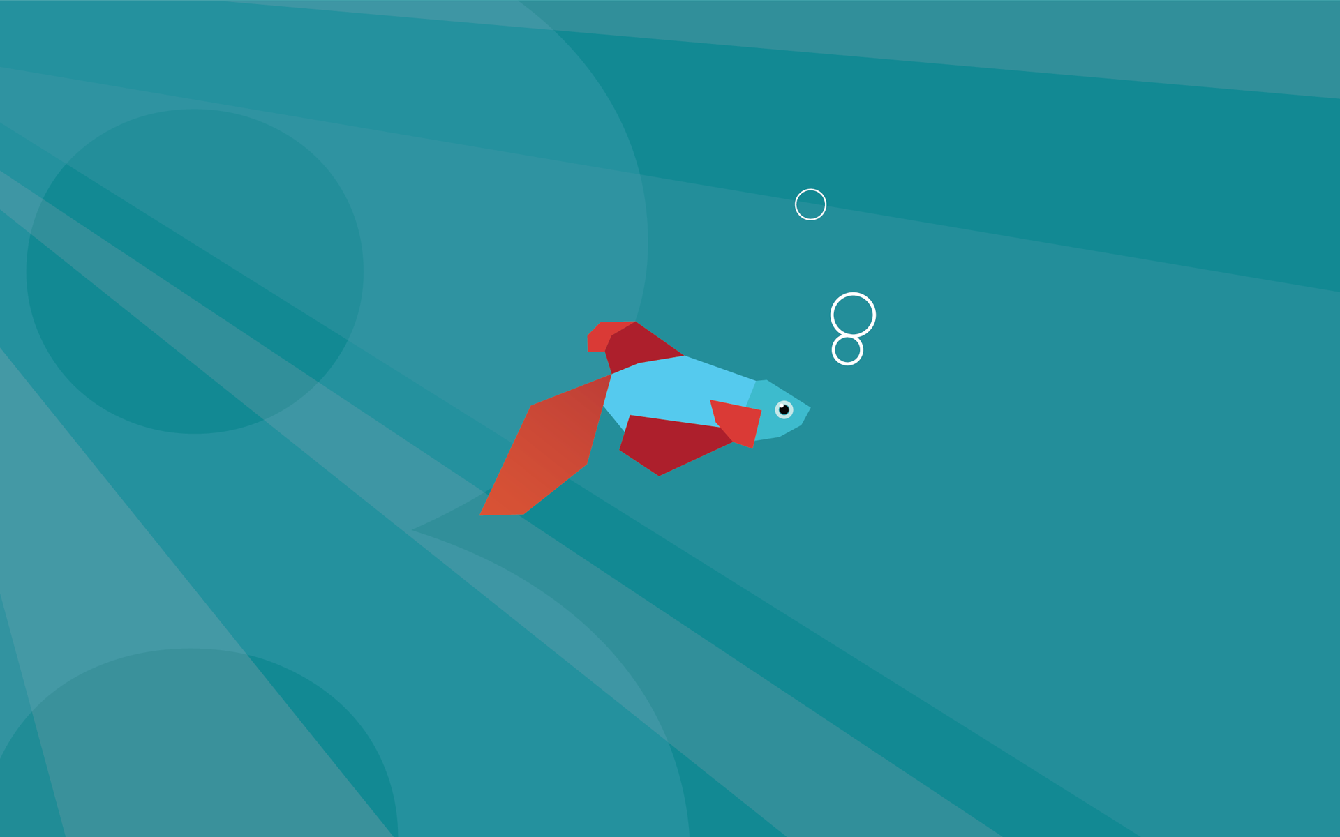 Windows 8 Wallpaper Fish