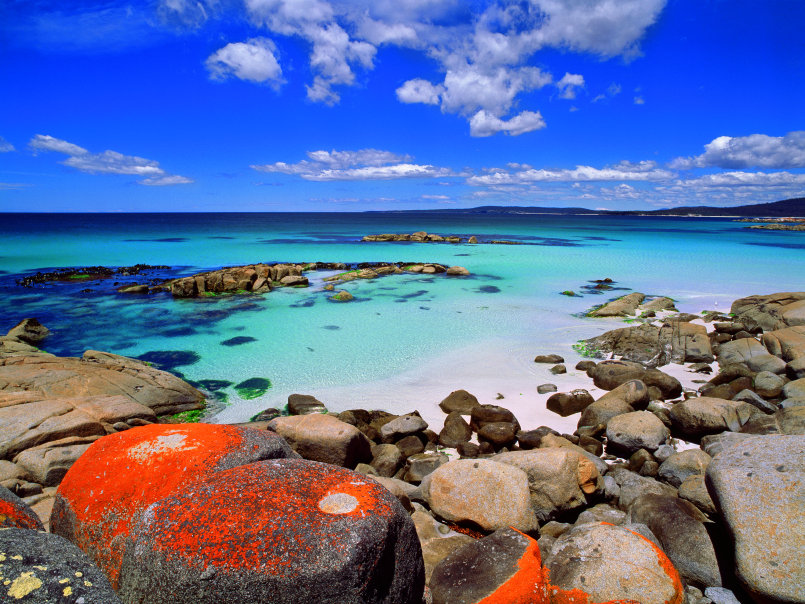 Bay Of Fires Tasmanias Most Beautiful Beaches