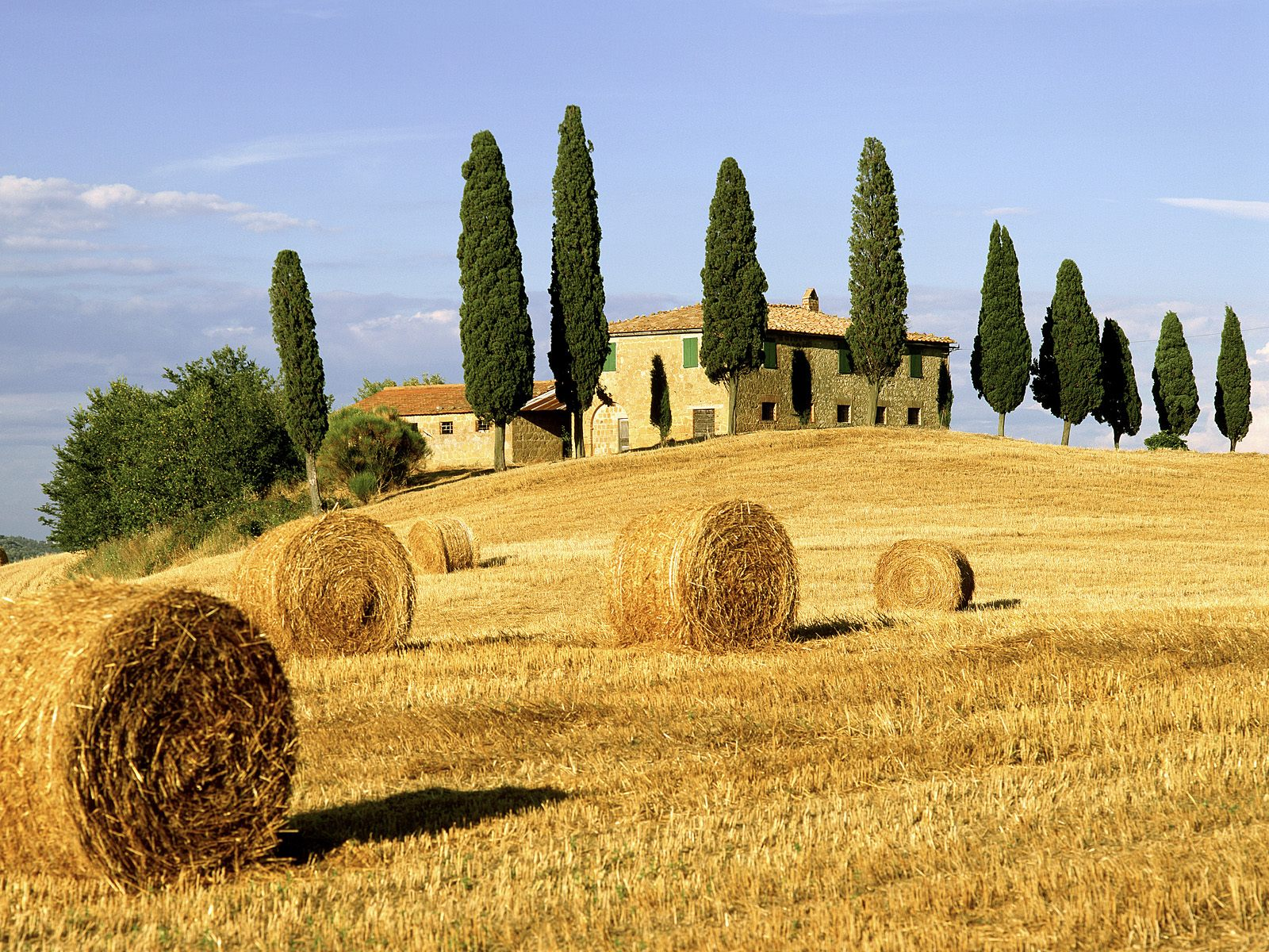 Tuscany Italy Field Photo