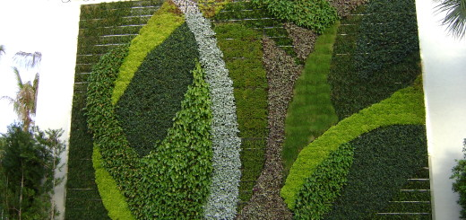 Beautiful Wall Garden Design
